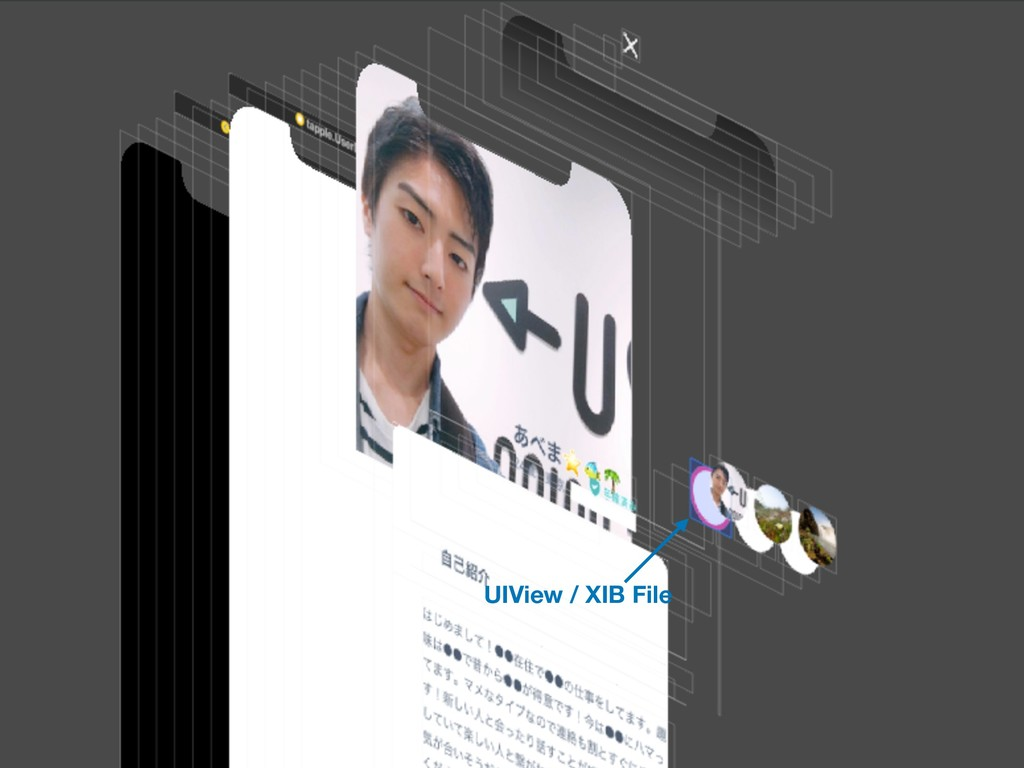 UIView / XIB File