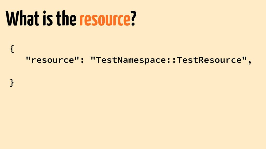 "{ ""resource"": ""TestNamespace::TestResource"", ! ..."