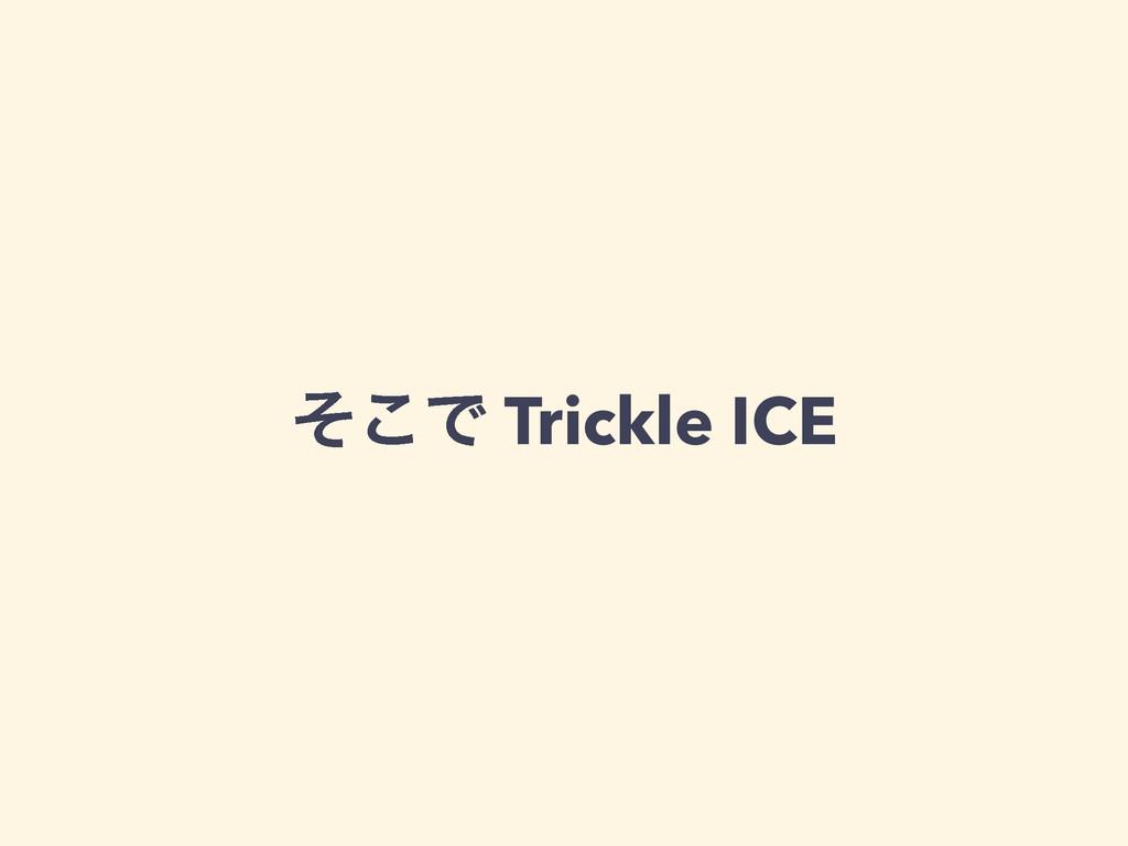 ͦ͜Ͱ Trickle ICE