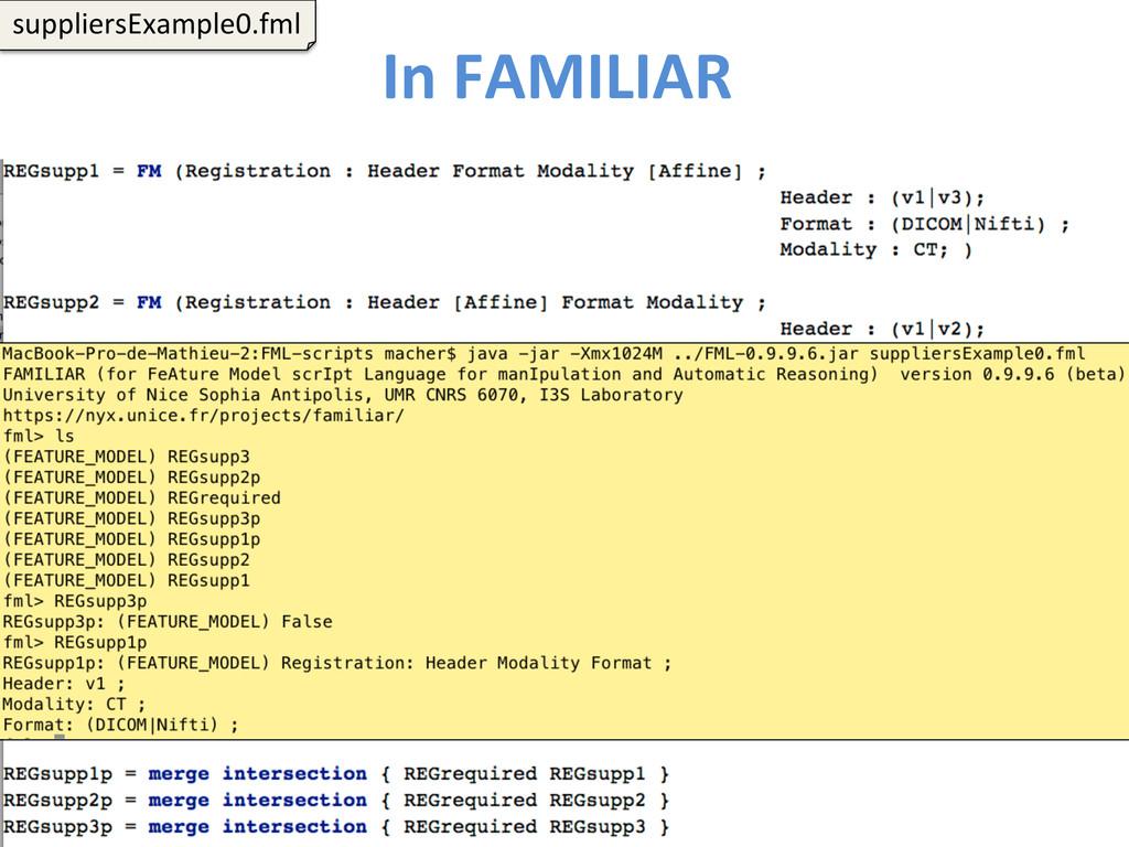 In FAMILIAR  116  suppliersExample0.fm...