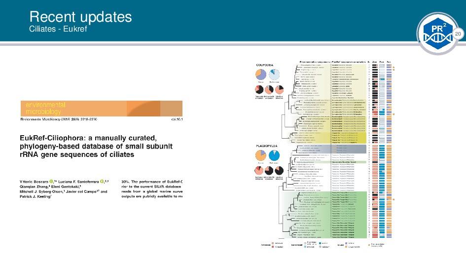 20 Recent updates Ciliates - Eukref |