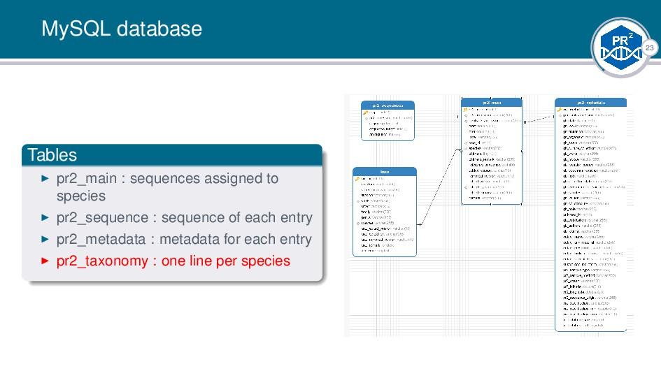 23 MySQL database Tables pr2_main : sequences a...