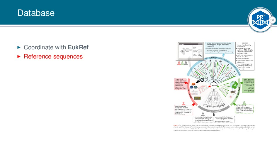 36 Database Coordinate with EukRef Reference se...