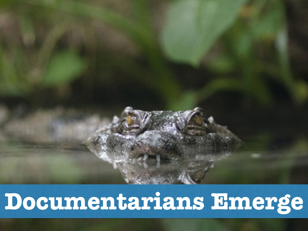 Documentarians Emerge