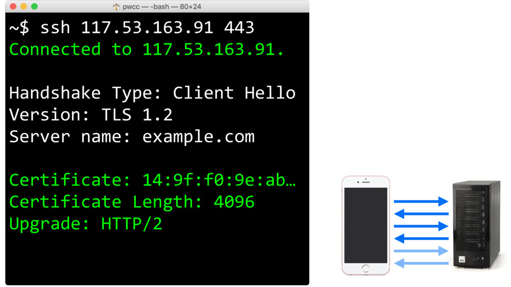 ~$ ssh 117.53.163.91 443 Connected to 117.53.16...