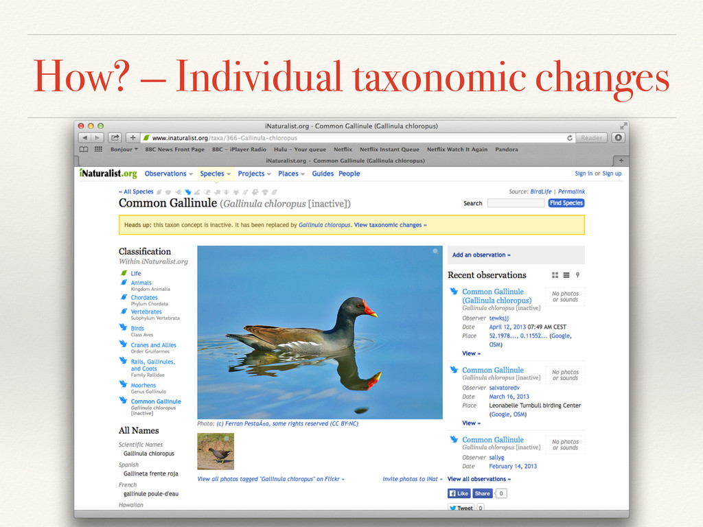 How? — Individual taxonomic changes