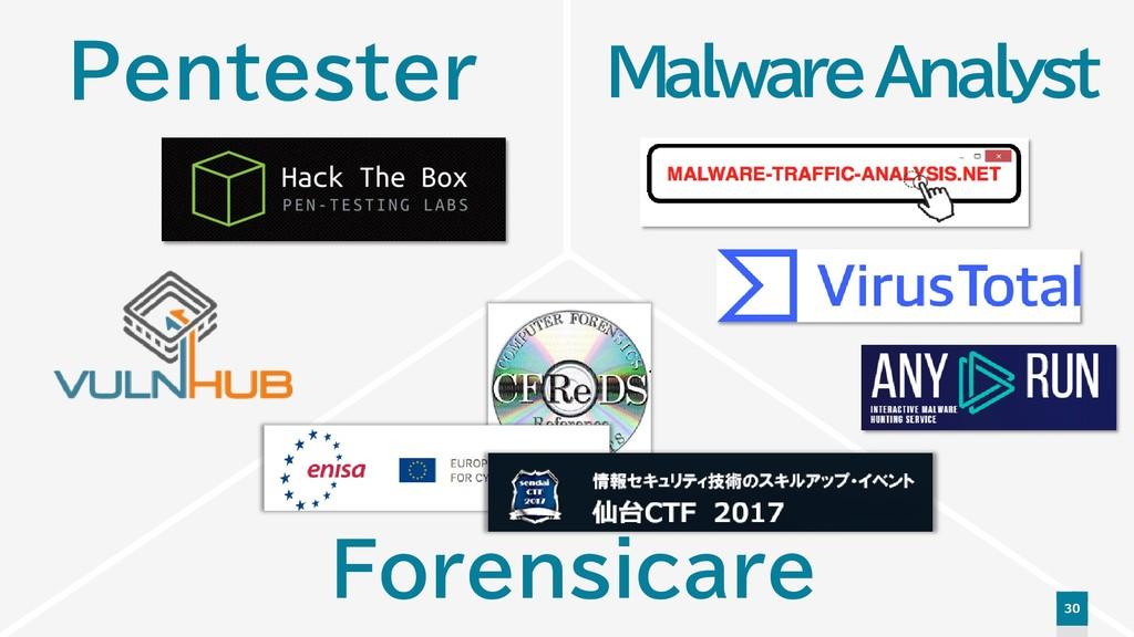 30 Malware Analyst Pentester Forensicare