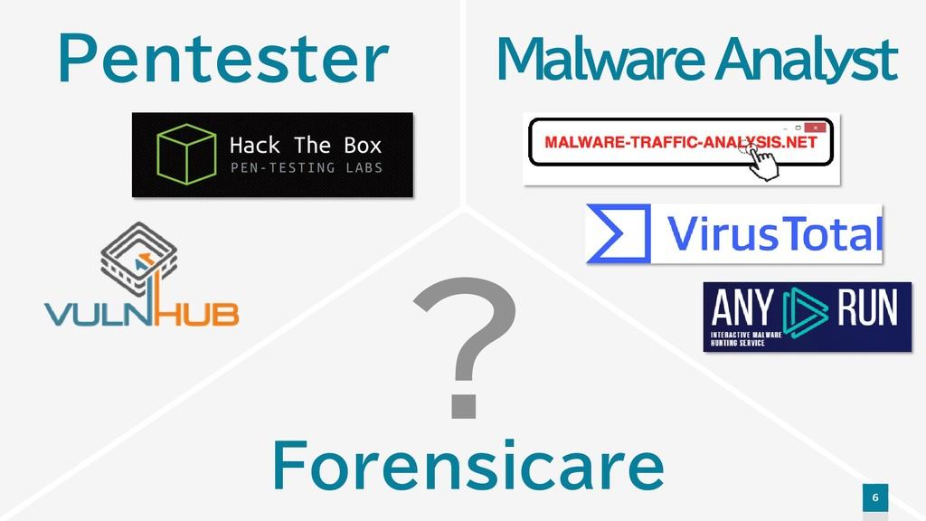 6 Malware Analyst Pentester Forensicare ?