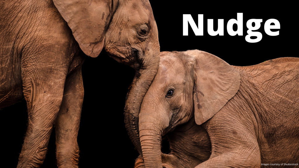 Nudge Images courtesy of Shutterstock