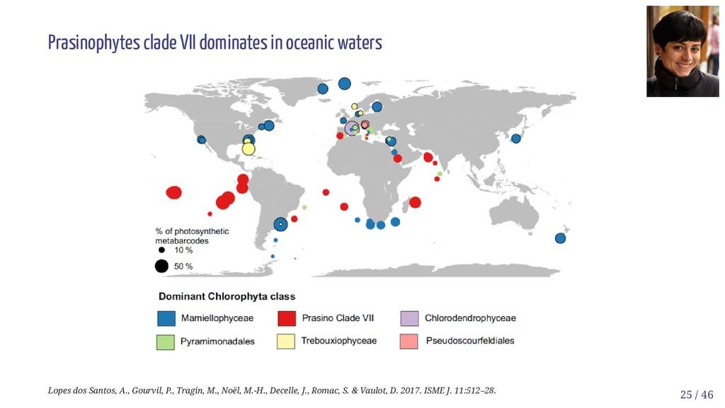 Prasinophytes clade VII dominates in oceanic wa...