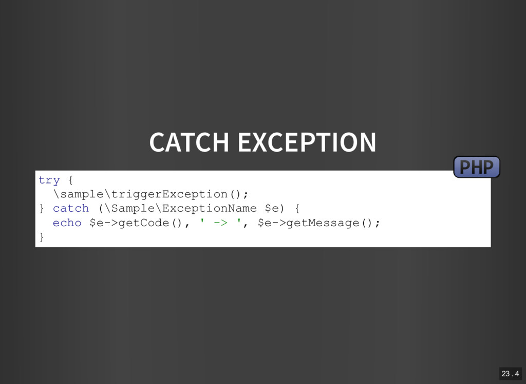 CATCH EXCEPTION try { \sample\triggerException(...