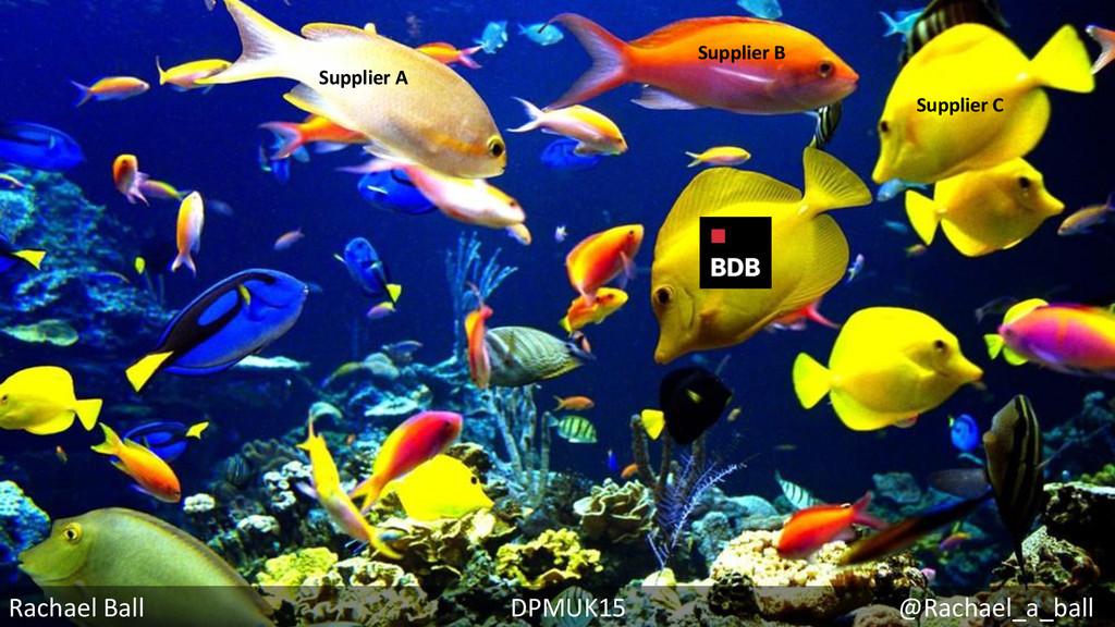 Rachael Ball DPMUK15 @Rachael_a_ball Supplier A...