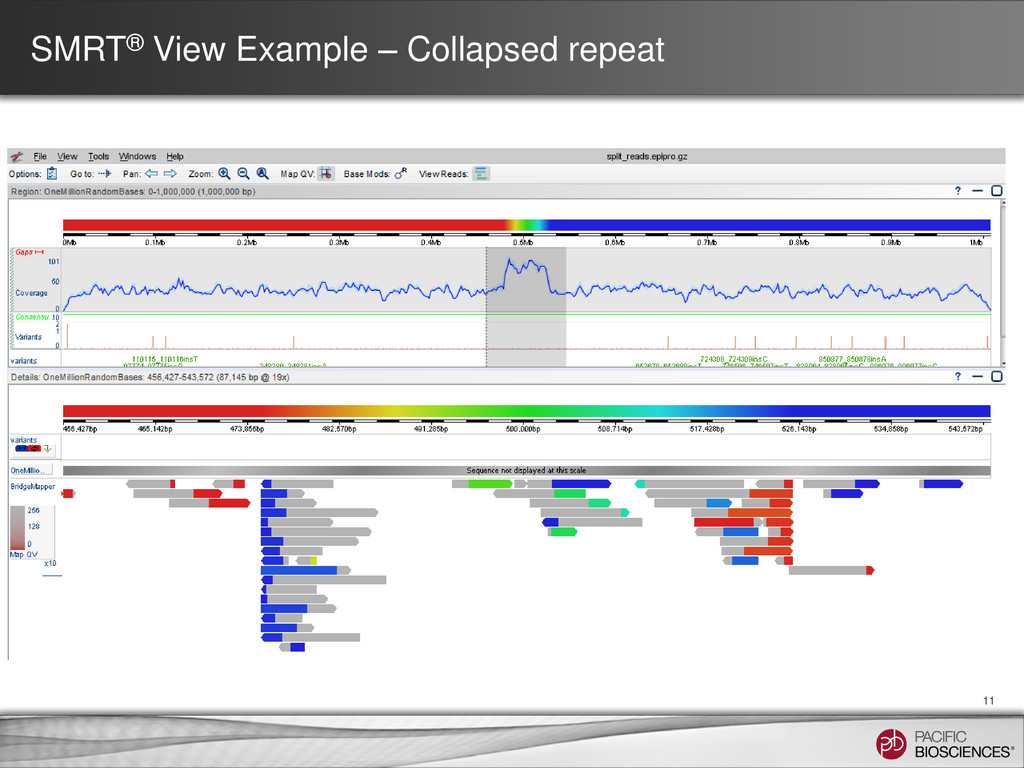 SMRT® View Example – Collapsed repeat 11