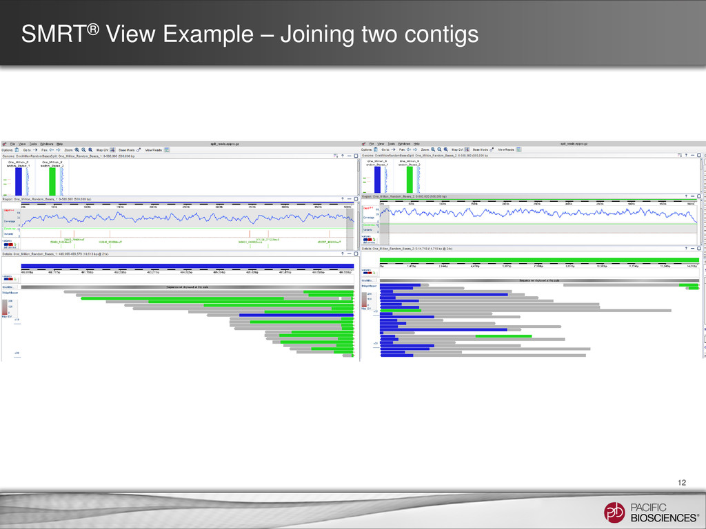 SMRT® View Example – Joining two contigs 12
