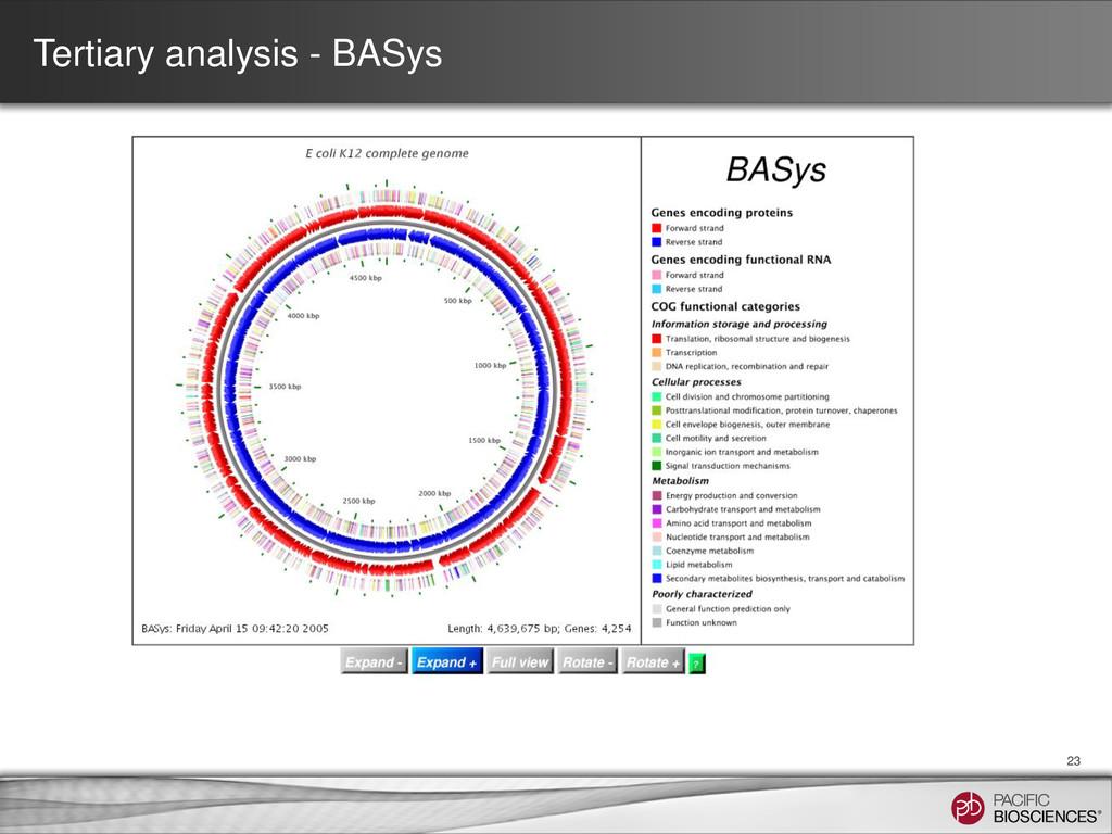 Tertiary analysis - BASys 23