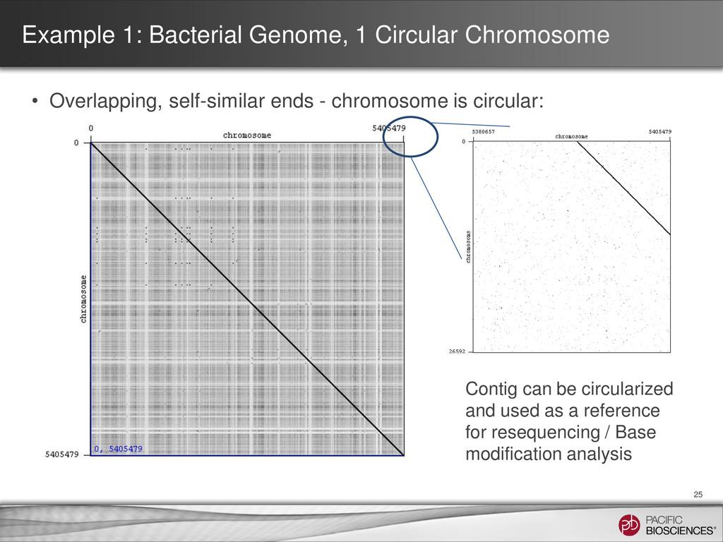 Example 1: Bacterial Genome, 1 Circular Chromos...