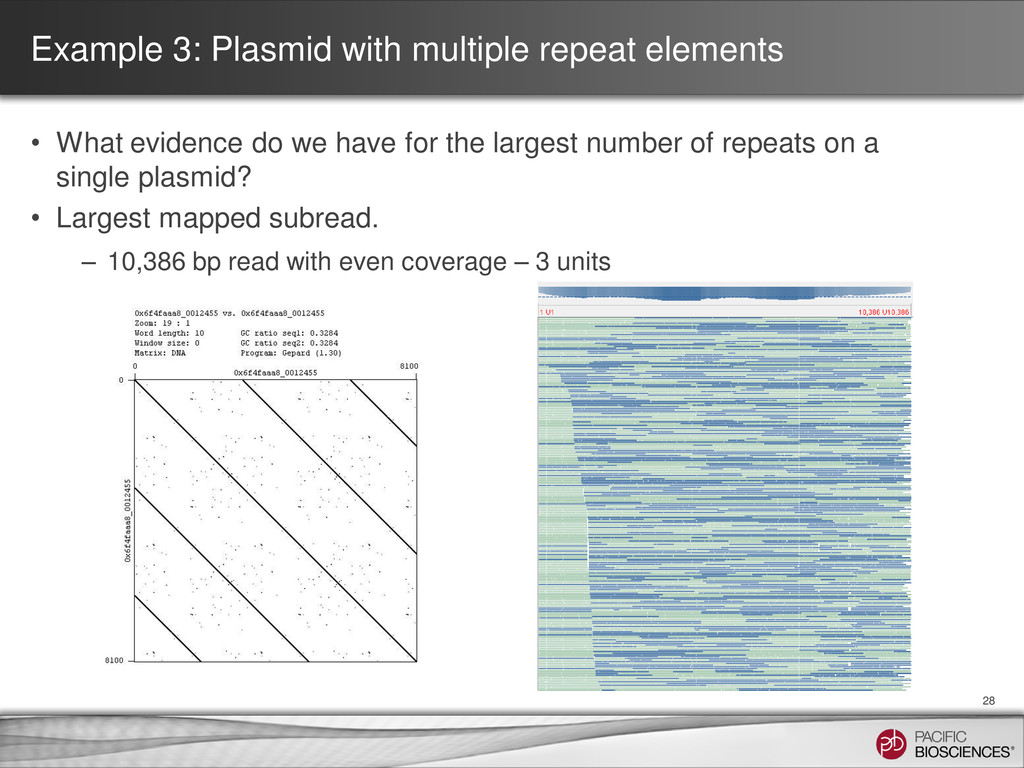 Example 3: Plasmid with multiple repeat element...