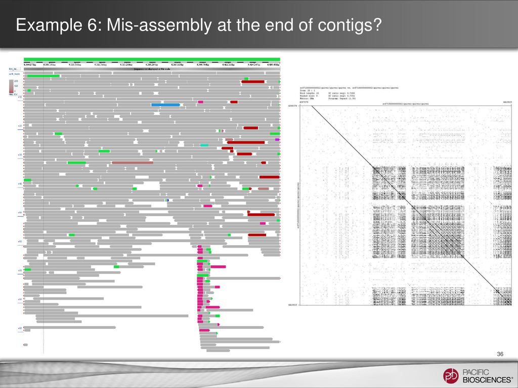 Example 6: Mis-assembly at the end of contigs? ...
