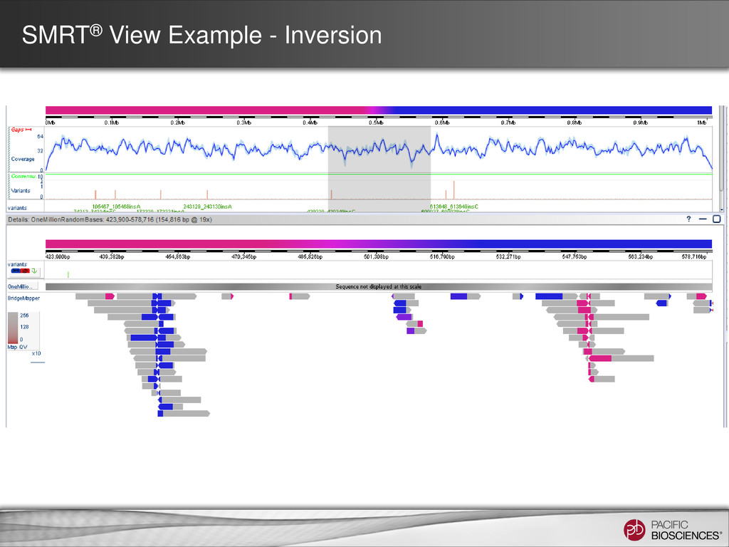 SMRT® View Example - Inversion