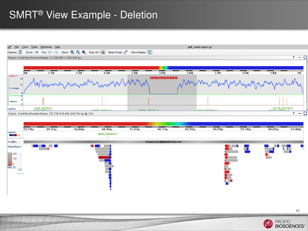 SMRT® View Example - Deletion 10