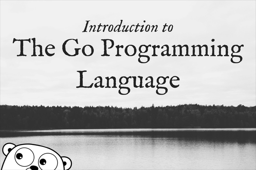 Introduction to The Go Programming Language