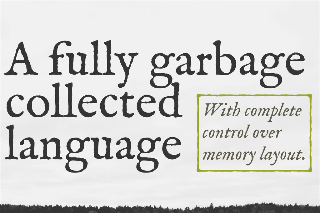 A fully garbage collected language With complet...