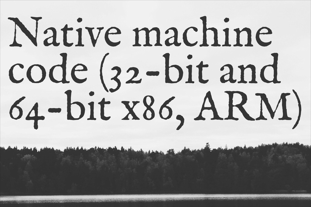 Native machine code (32-bit and 64-bit x86, ARM)