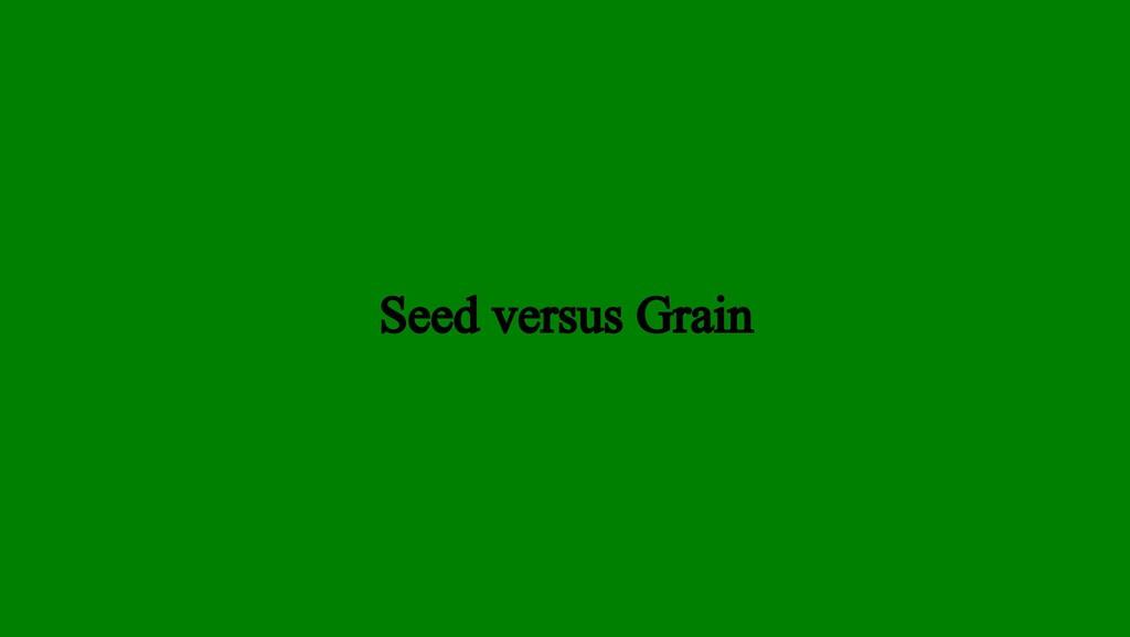 Seed versus Grain