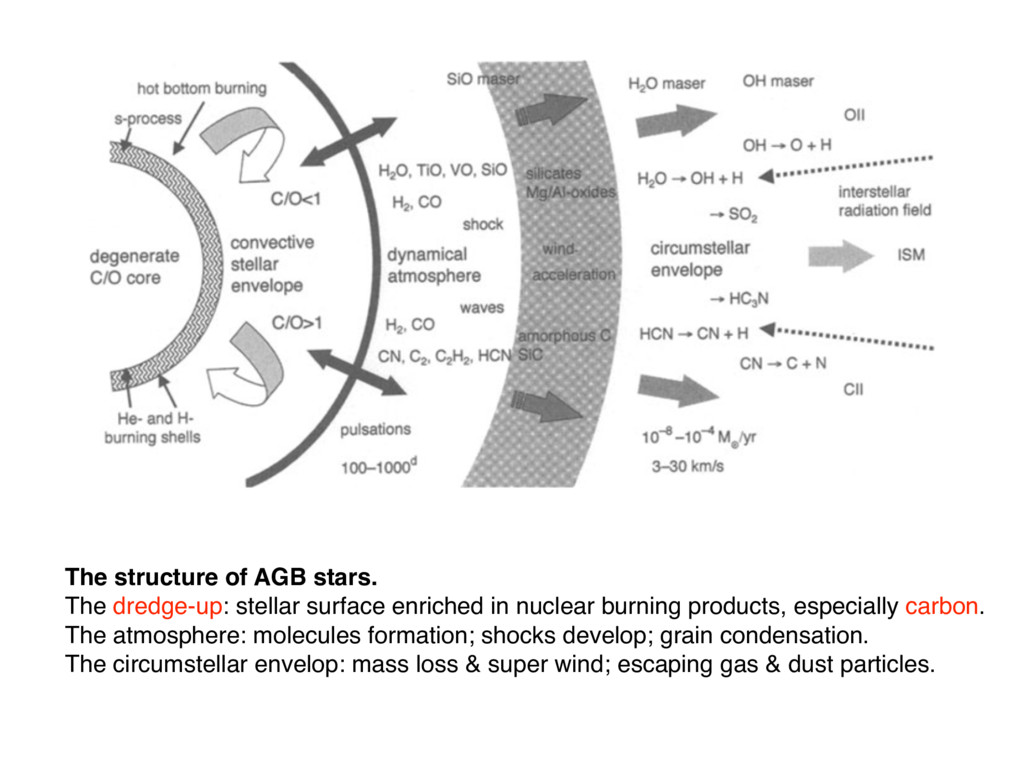 The structure of AGB stars. The dredge-up: stel...