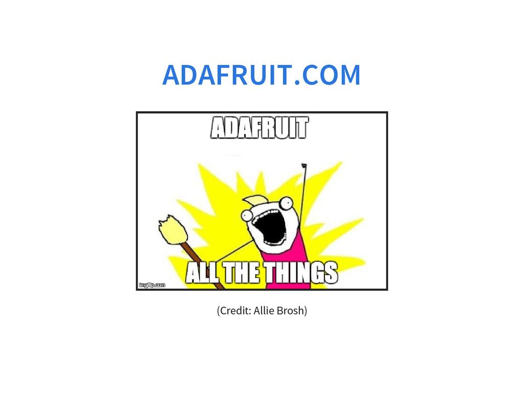 ADAFRUIT.COM (Credit: Allie Brosh)