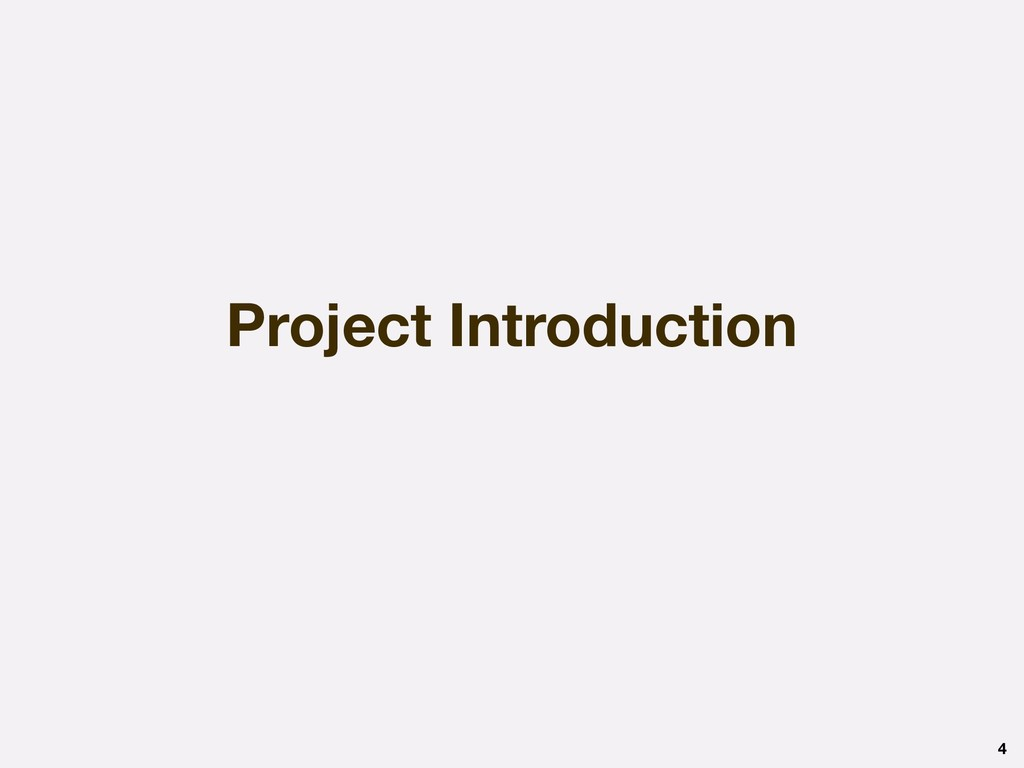 Project Introduction 4