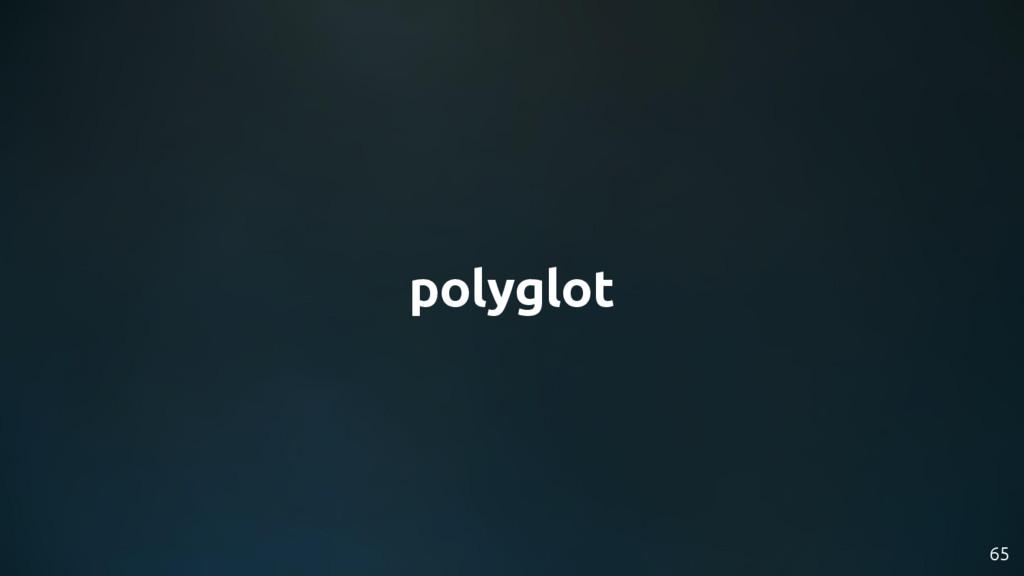 polyglot 65