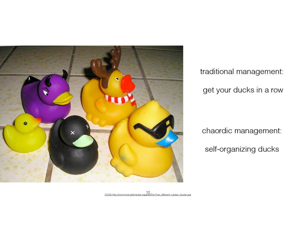 chaordic management: ! self-organizing ducks CC...