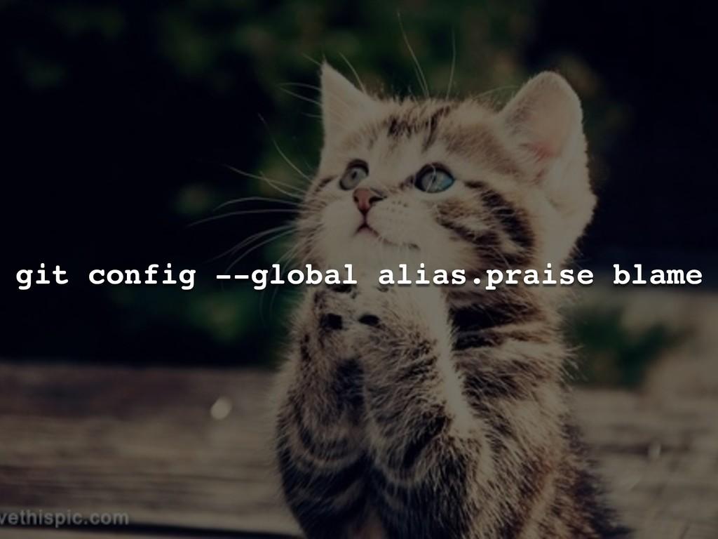 git config --global alias.praise blame