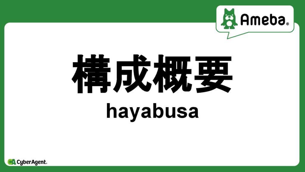 構成概要 hayabusa