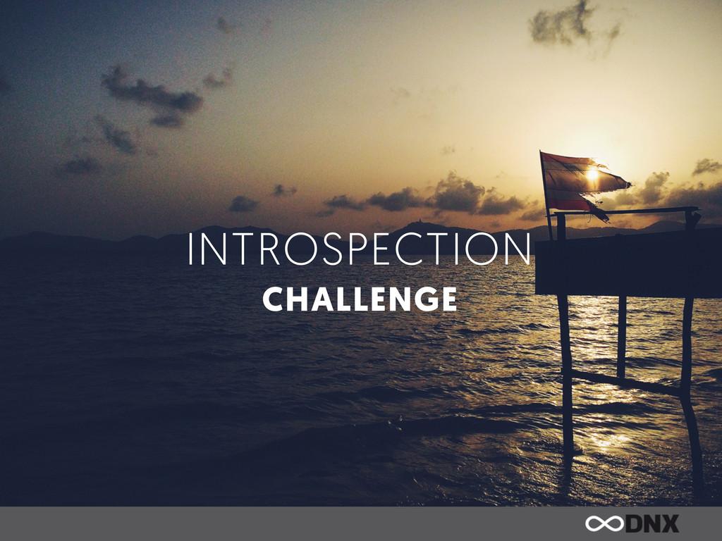 INTROSPECTION CHALLENGE