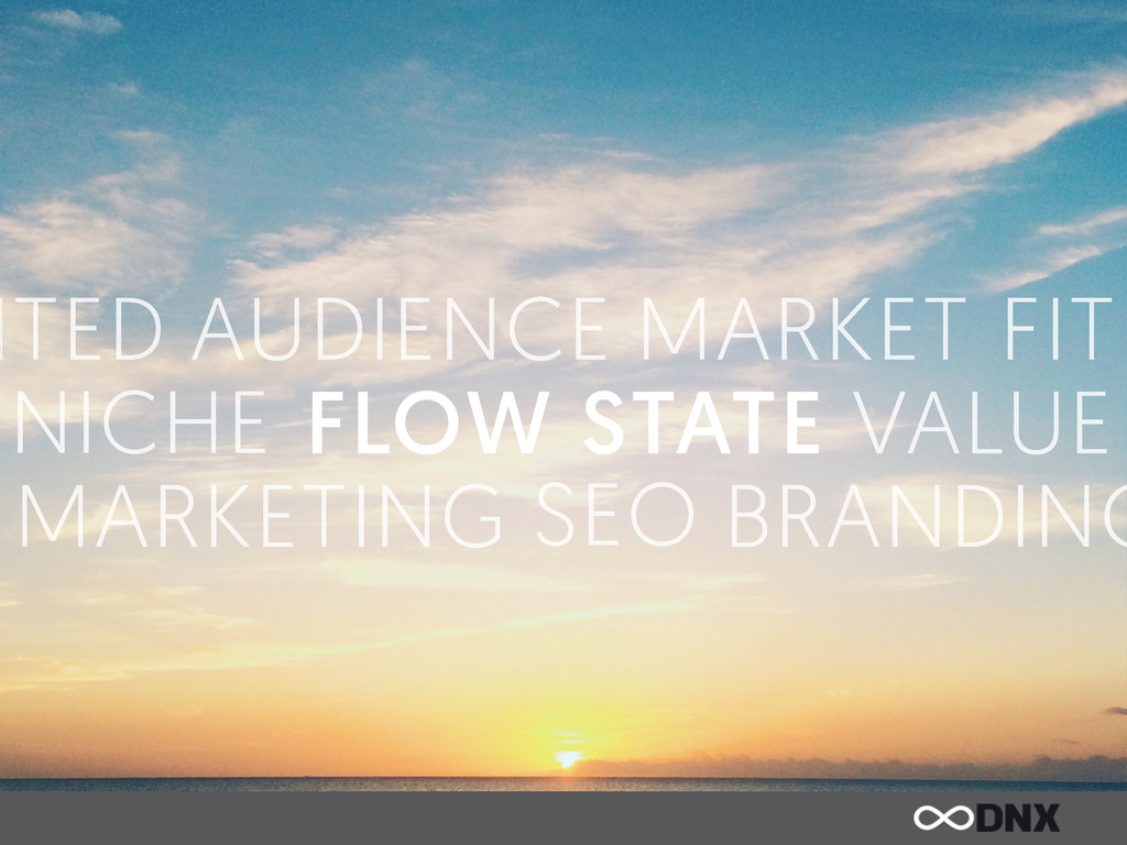 FLOW STATE MARKET FIT AUDIENCE VALUE NICHE MARK...