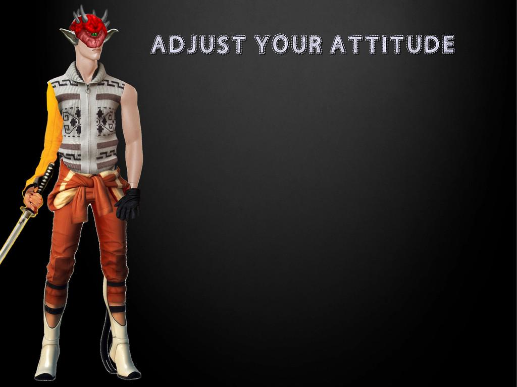 ADJUST YOUR ATTITUDE ADJUST YOUR ATTITUDE