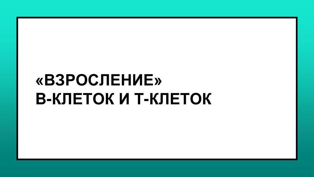 «ВЗРОСЛЕНИЕ» B-КЛЕТОК И Т-КЛЕТОК