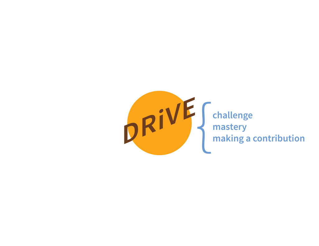 DRiVE challenge mastery making a contribution {