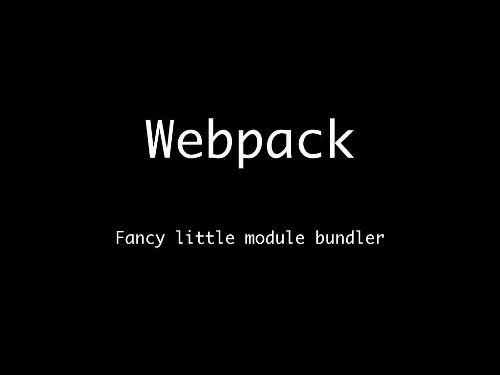 Webpack  Fancy little module bundler