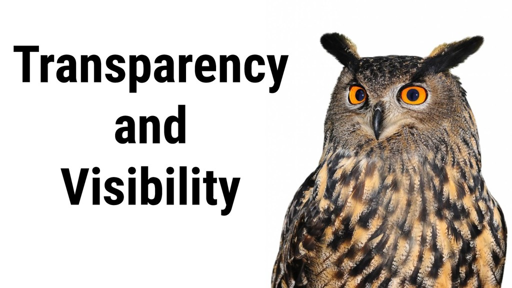 Transparency and Visibility