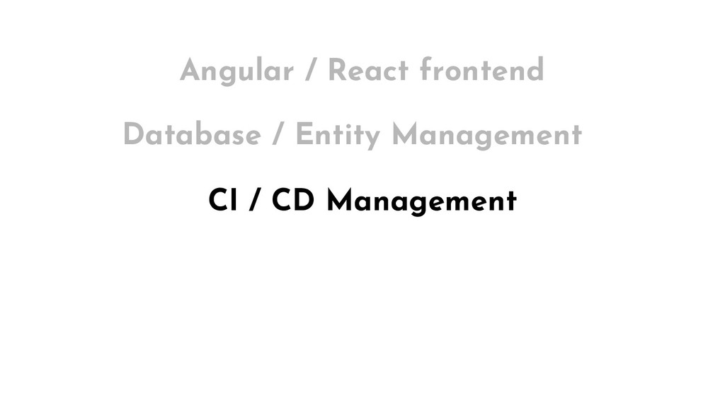 CI / CD Management Angular / React frontend Dat...