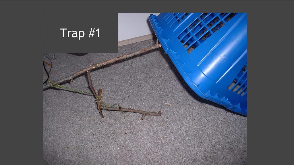 Trap #1