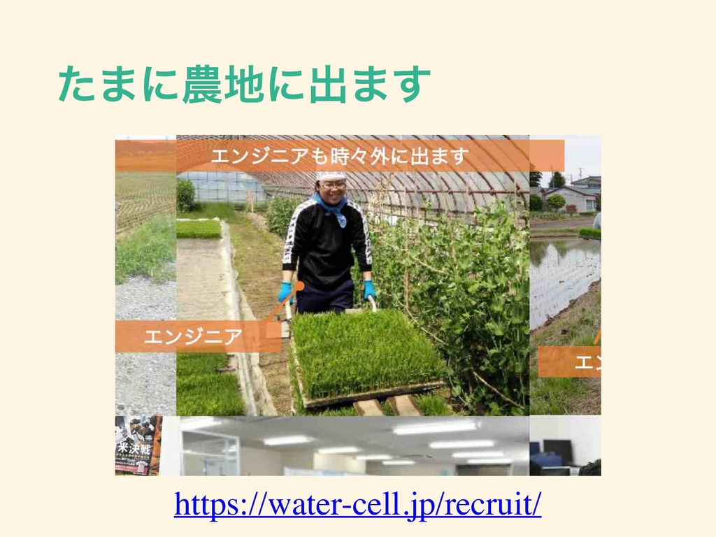 ͨ·ʹ೶஍ʹग़·͢ https://water-cell.jp/recruit/