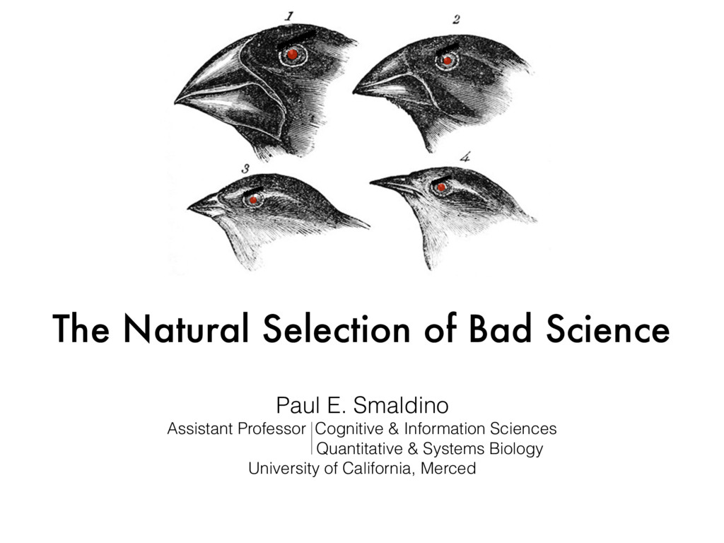 The Natural Selection of Bad Science Paul E. Sm...