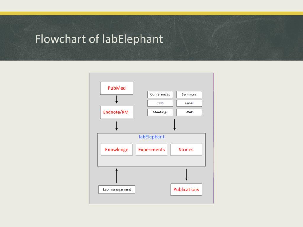 Flowchart'of'labElephant'