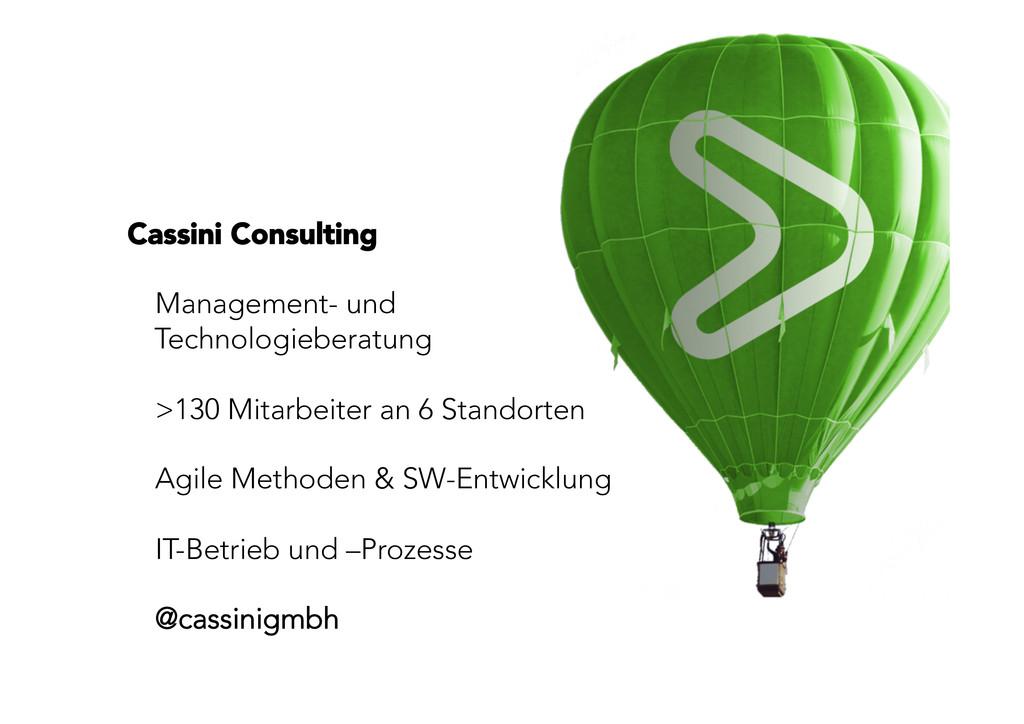 Cassini Consulting   Management- und Technol...