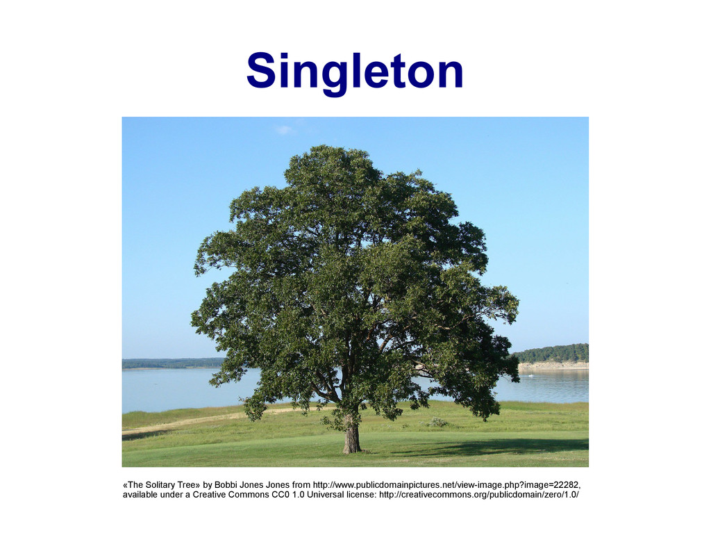 Singleton «The Solitary Tree» by Bobbi Jones Jo...