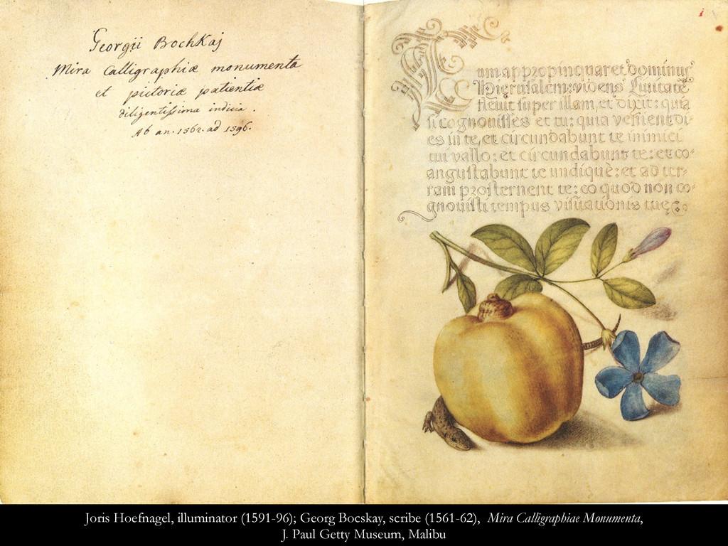 Joris Hoefnagel, illuminator (1591-96); Georg B...